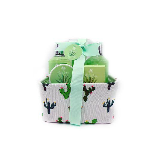 cesta tela cactus aloe vera